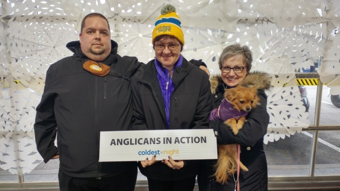 Anglicans in Action 2017