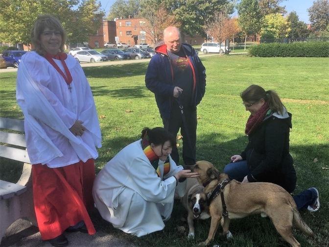 Blessing of animals Hamilton