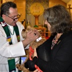 Blessing the animals in 