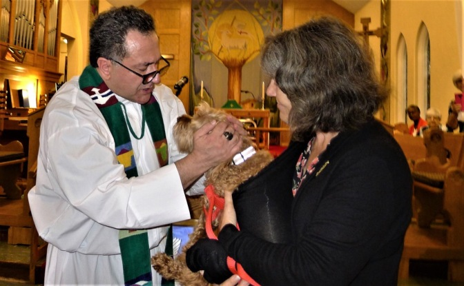 Blessing of animals Stoney Creek