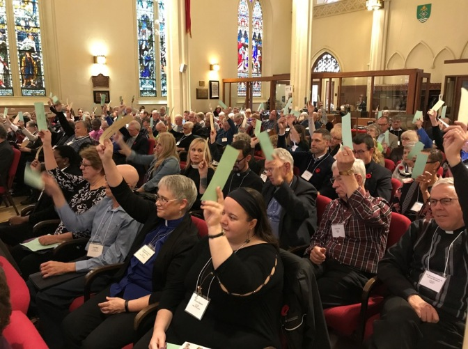 Synod 8 voting